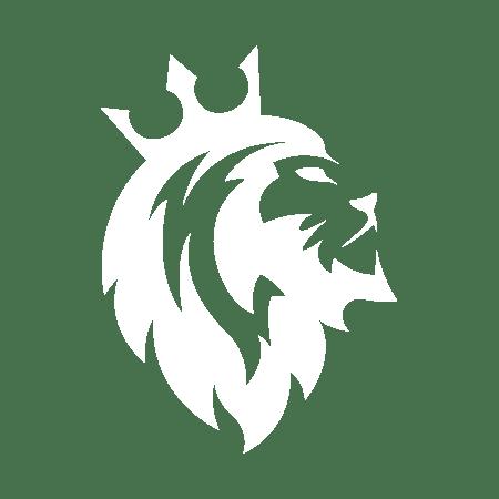 leonus-logo-hp